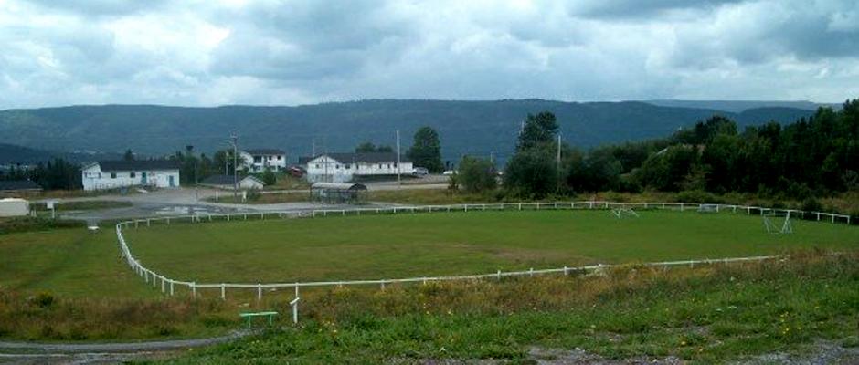 meadows-field